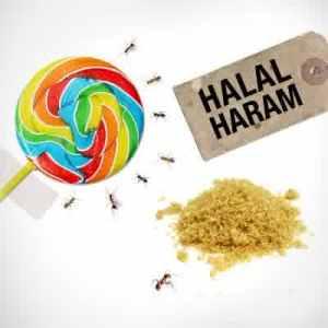 Ayat Al Qur An Dan Hadits Tentang Makanan Yang Baik Dan Halal